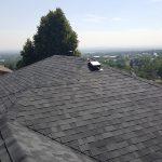 Variegated grey roof